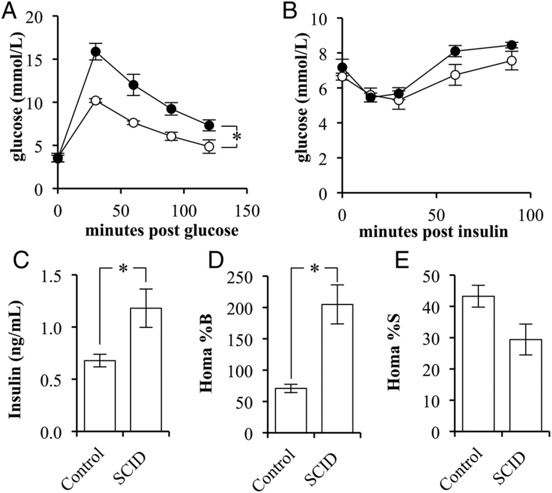 A role of the adaptive immune system in glucose