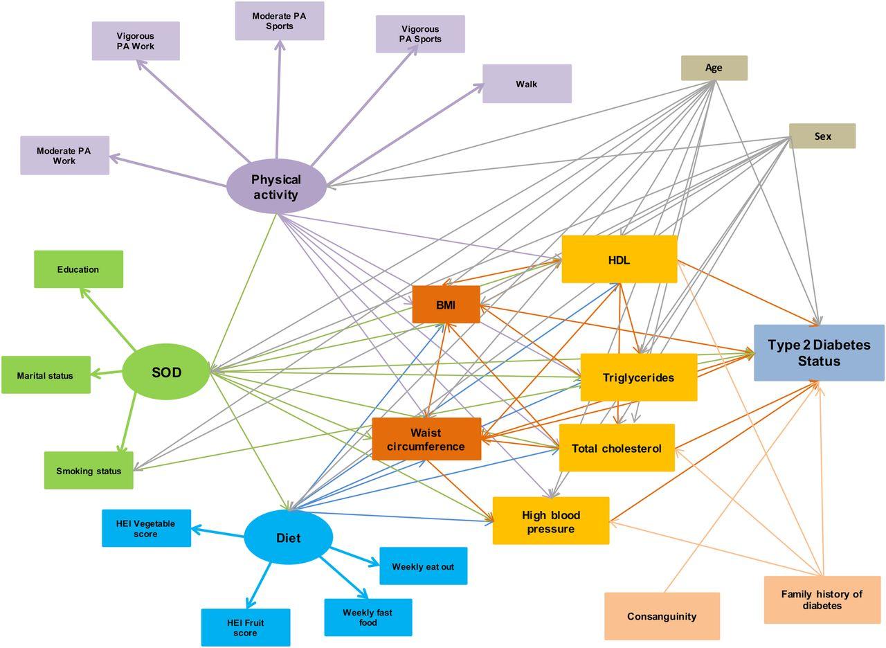 Structural Equation Model For Estimating Risk Factors In